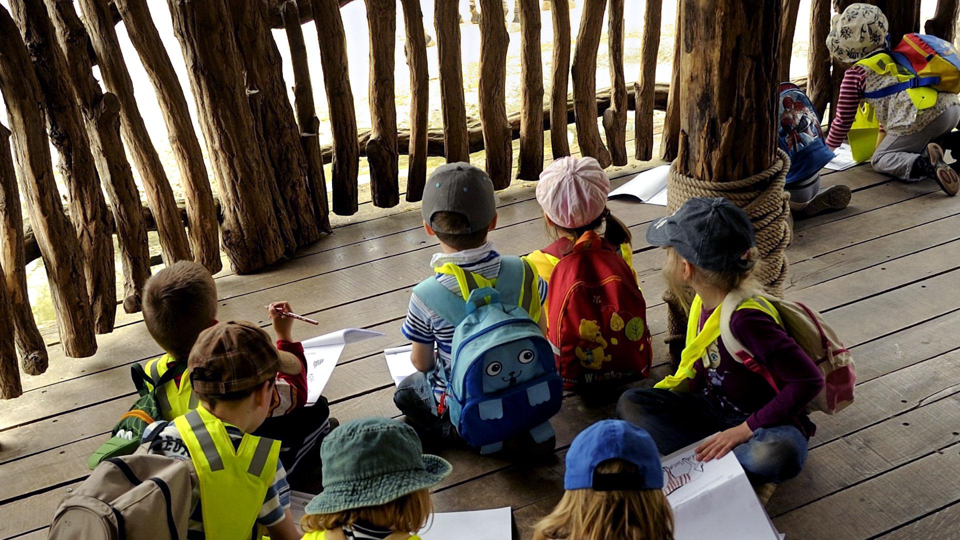Espace enseignants | Zoo de Mulhouse, parc zoologique et botanique