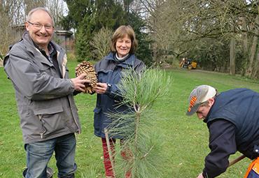 Emile-Jean Wybrecht et Véronique Scius-Turlot, directrice du conservatoire botanique d'Alsace, durant la plantation de l'arbre.