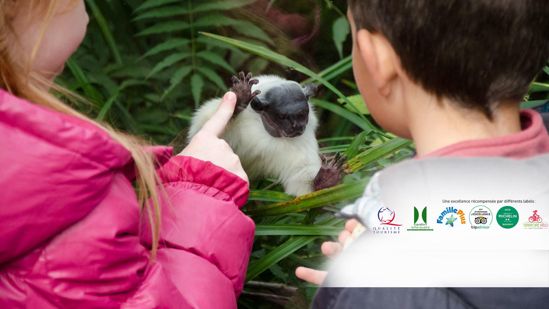 Le Parc zoologique et botanique aux qualités reconnues | Zoo Mulhouse, zoologischer und botanischer Garten