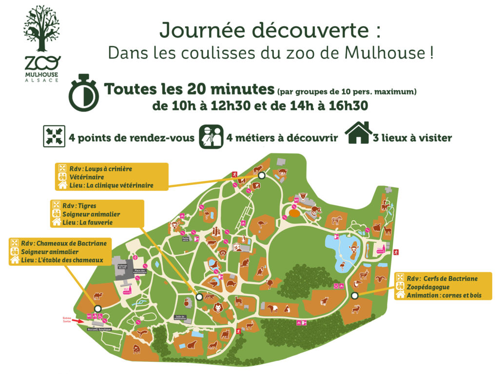 Plan de la journée découverte au Parc zoologique et botanique de Mulhouse