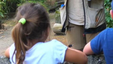 [Vidéo] Pédagogie et sensibilisation au Parc zoologique et botanique de Mulhouse | Zoo de Mulhouse, parc zoologique et botanique